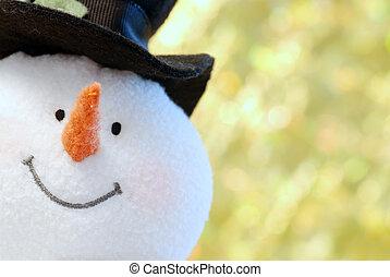 encima de cierre, snowman, cara