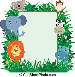 Encuadre de animales salvajes