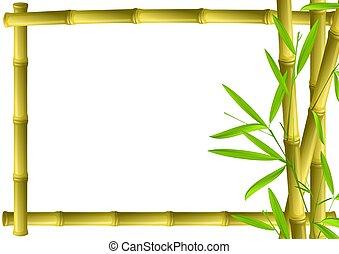 Encuadre de bambú