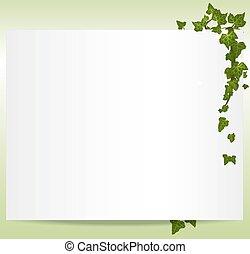 Encuadre de vector primavera/summer con hojas de hiedra