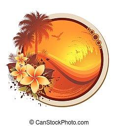 Encuadre tropical