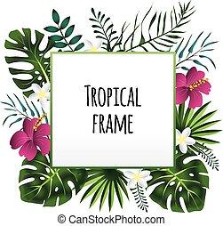 Encuadre tropical, plantilla con lugar para texto. Ilustración de vectores, aislada en blanco.