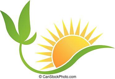 Energía biosolar verde. Vector de logo de planta y sol