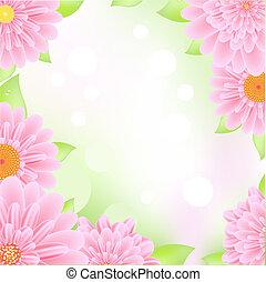 Enmarcado de gerbers rosas