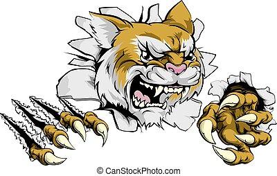 enojado, mascota, wildcat, deportes