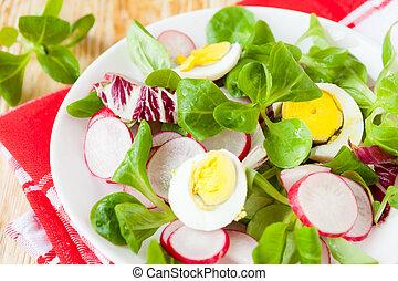 Ensalada fresca y nutritiva con huevo y rábano
