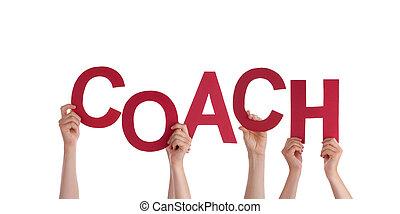 entrenador, manos de valor en cartera