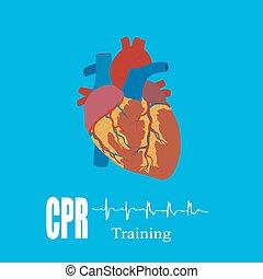 Entrenamiento de reanimación cardiopulmonar