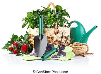 Equipo de jardín con plantas verdes y flores