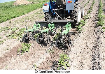 Equipos especiales en un tractor para marihuana en la agricultura