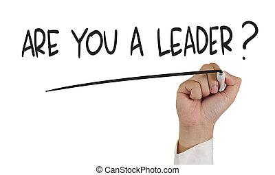 ¿Eres un líder?