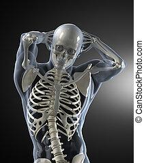 Escáner médico del cuerpo humano