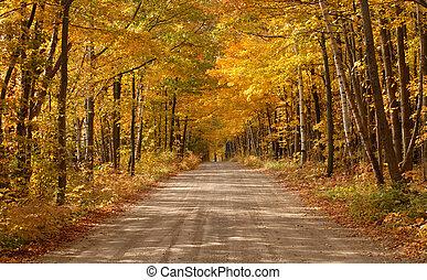 Escénico camino de campo en un escenario de madera