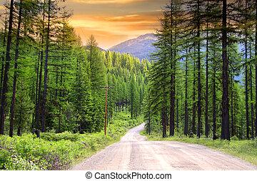 escénico, montana, unidad, rural