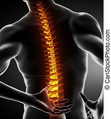 Escaneo de columna vertebral masculino