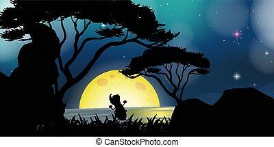 escena de la naturaleza, noche