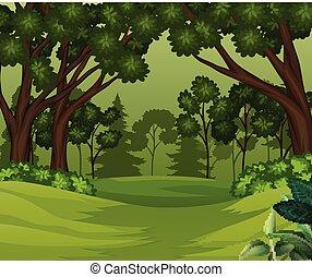 Escena del bosque con árboles