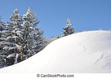 Escenarios alpinos