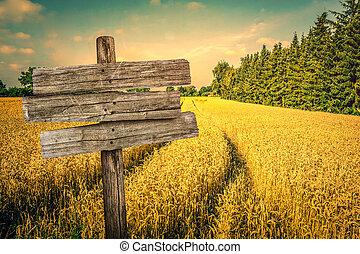 Escenografía de campo de cultivo dorado