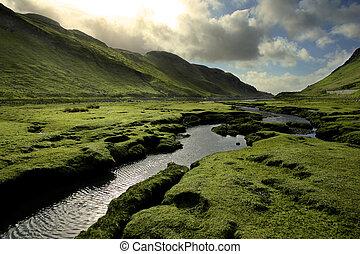 escocia, primavera, valle, verde