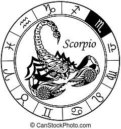 escorpión negra, zodíaco, blanco