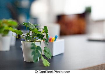 escritorio, oficina, pequeño, apartamento, flores