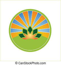 Escudo solar