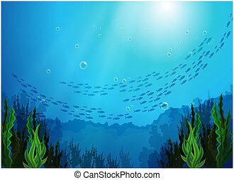 Escuela de peces bajo el mar