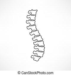 espina dorsal, símbolo, diseño, diagnósticos