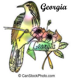 estado, georgia, pájaro