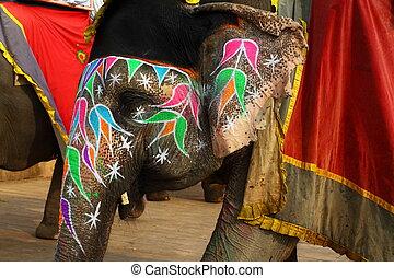 estado, jaipur, elephant., india, rajasthan.