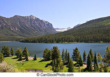 estados unidos de américa, nacional, lago, highlite, bosque, montana, bozeman, gallatin