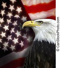 Estados Unidos de América - patriotismo