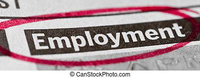 Estandarte de empleo