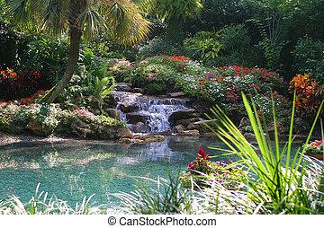 estanque tropical