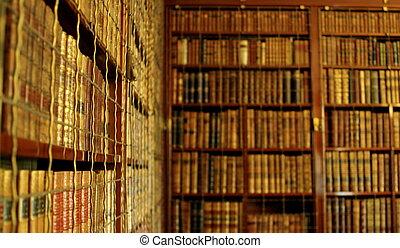 estantes para libros, biblioteca