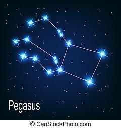 """estrella, sky., """"pegasus"""", ilustración, vector, noche, constelación"""