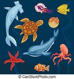 estrellas de mar, delfín, tortuga, marina, fauna, medusa, ilustración, vida, vector, océano, mar, pulpo, habitantes, peces