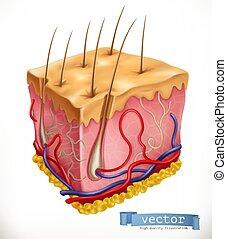Estructura de piel. Medicina. Ícono vector 3D