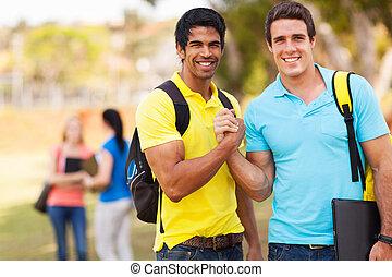 estudiantes, universidad, macho, fraternidad