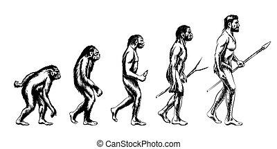 evolución, humano, ilustración