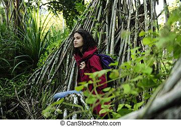 excursionista, rainforest, ecotourism:, hembra, explorar, desierto