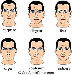 expresión, facial