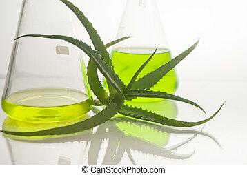 Extracción de plantas. Química natural.