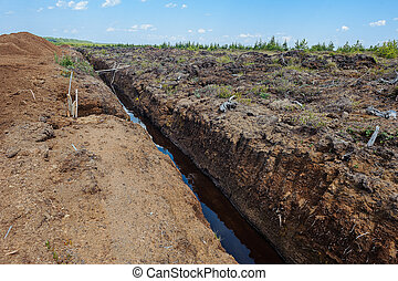 extracción, turba, campo