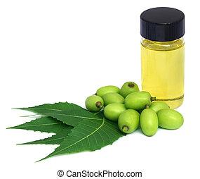 Extracto de neem medicinal con frutas y hojas