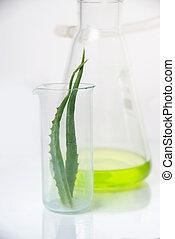 Extracto de plantas. Química natural.