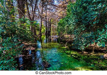 Fall foliage en el cristal claro frío río en Texas.