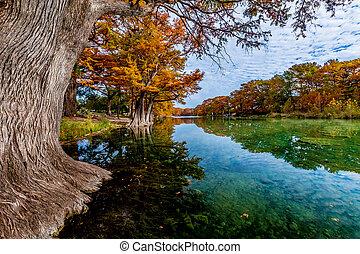 Fall foliage en el río Frito, TX