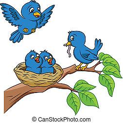 Familia de aves